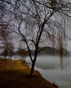 niebla en el rio – Version 3