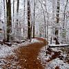 camino nevado – Version 4