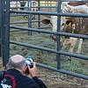 Gary  and bull_BillM