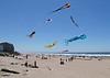 Giant Kites - Jack Walker