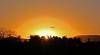 Sunrise Flight-Jack Walker