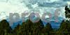 SAPC_StormySister_LindaZ_(77,78,79) copy