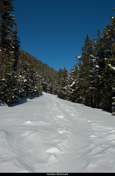 Trail Ridge Road in Snow