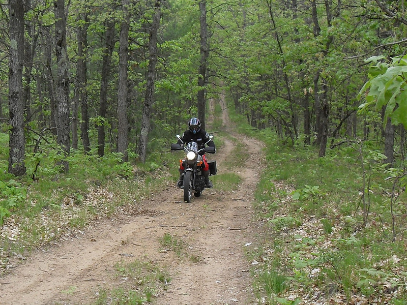 """""""A photo is of my son, Ted Tackett, on his 2008 Triumph<br /> Scrambler. He rode the Scrambler on the AMA Dual Sport ride at Whiskey<br /> Creek, Mich. The event was sponsored by the Great Lakes Dual Sporters, of<br /> which Ted and I are members. Seeing the big """"old"""" Triumph cruising down the<br /> two-tracks of Northern Michigan brought back many memories of the good old<br /> days for the, um, more senior members. Younger members just shook their<br /> heads when told about the old days when Triumphs, BSAs and the like were<br /> common off-road rides. They had no desire to trade there DRZ's in for an old<br /> TR-6."""" - Charlie Tackett of Kalamazoo, Mich."""