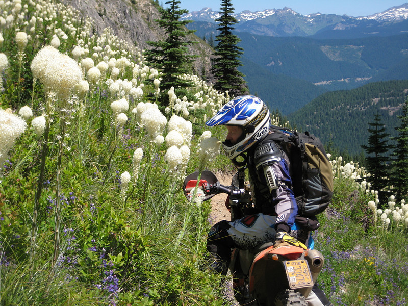 """Susan Post (""""Flying Ant"""") stopping to smell the bear grass flowers in Gifford Pinchot National Forest, Wash. - Russell Burress of Portland, Ore."""