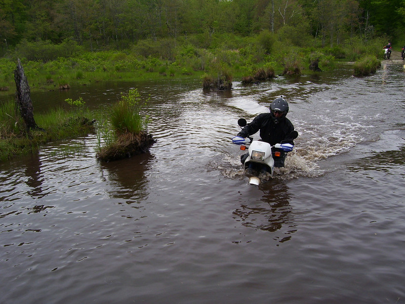 """""""A picture of a flooded road in Tolland State Forest , Mass. - Daniel Baisley of Schenectady, N.Y."""