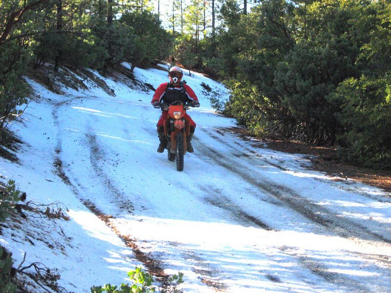 Skippy on Goat Mountain near Stonyford, Calif. - Mike Romano of San Jose, Calif.