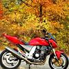 """My Kawasaki Z1000 at Point Pele, Ontario Canada."" - Steven Hauptman of Southfield, Michigan"