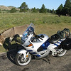 Custer State Park in the Black Hills of South Dakota. - Kevin Erickson of Prescott Valley, Ariz.