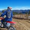 Tonto National Forest - Clint Compton Mesa, Ariz.