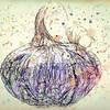 Lana Rebert_Fall Pumpkin