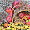 3rd Place_Cathy Locklear_Autumn Harvest