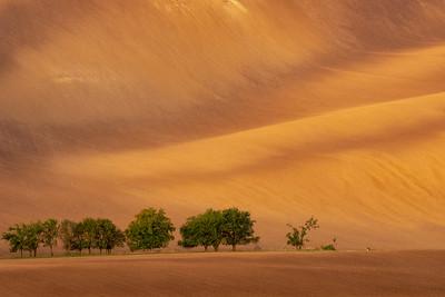 Moravia Landscape
