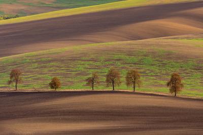 Southern Moravia