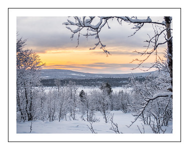 Midday in Lapland