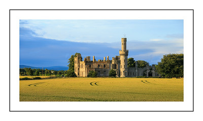 Duckett's Grove sunset