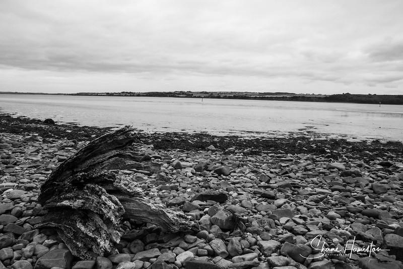Foyne Beach with log