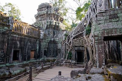 Siem Reap - Ta Prohm Wat