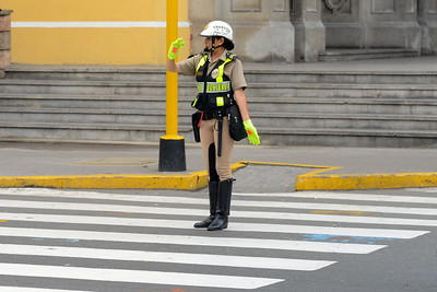 Hot Fuzz, Lima