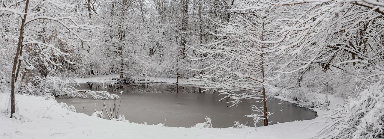 Upper pond in winter