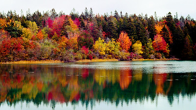 Colors of Maine