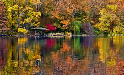 Autumn in Central Park NY