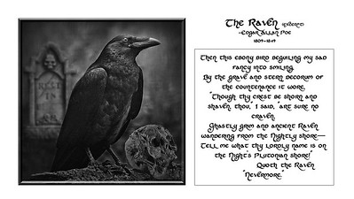 L1-Mono-D Berthman-The Raven-1400