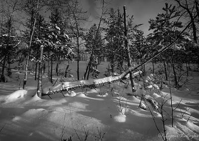 BHP snow scene