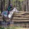 Sally Nelson,   Riding Through the Trees