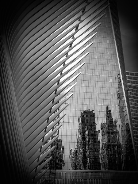 Stephanie Brand,   Freedom Tower and Oculus, New York City