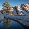 Brad Kincaid,   Lone Pine Reflected