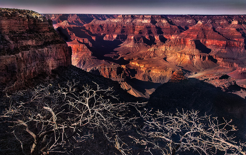 D'Arcy Gue,   Grand Canyon in Winter