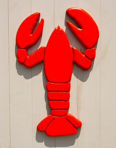 Tough Lobster