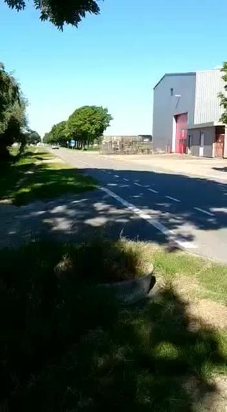 video-1572448230