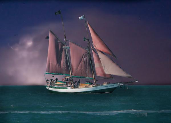 Pirates by Danny Haddox