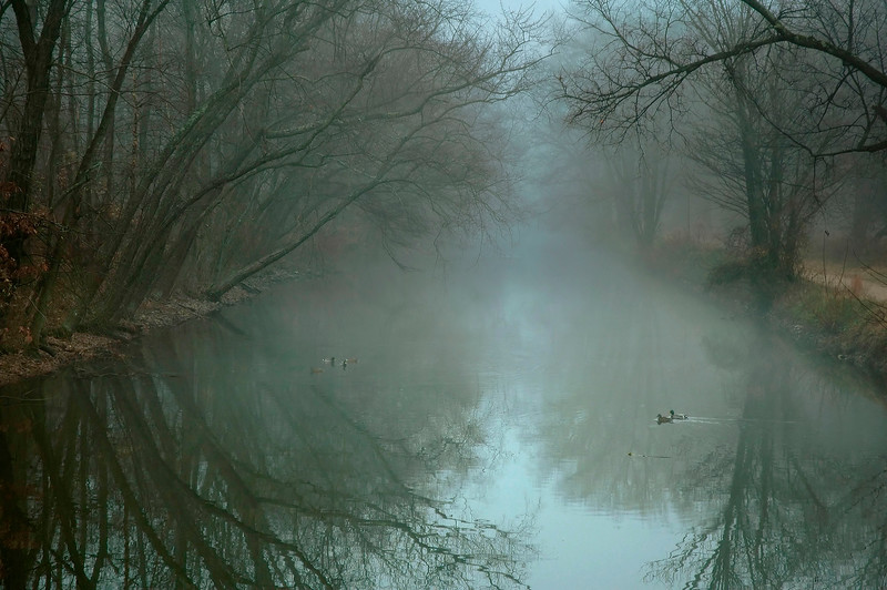 Canal at Dawn