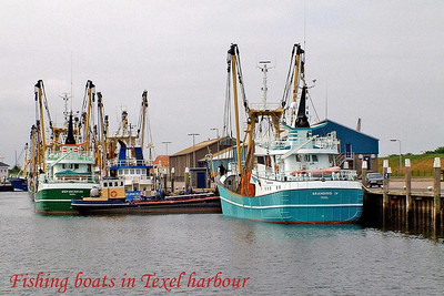 The Fishing Fleet, Texel, Netherlands