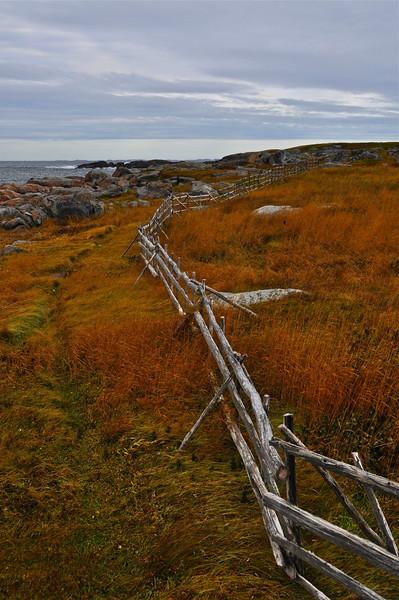 Fogo Island Fence
