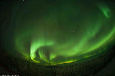Aurora Borealis in Alaska Photographers Name : Roger Marty Photographers Web Site : www.icefogfoto.com