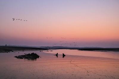 Sunrise, Satpura National Park