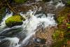 Fundy NP Falls 2