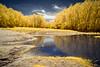 River Overflow, IR