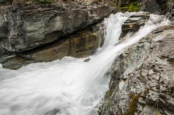 Avalanche Creek Rush