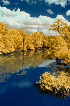 Title: Blue Bayou in Gold IR, Category: Pictorial, Maker: Jim Lawrence, Score: 11