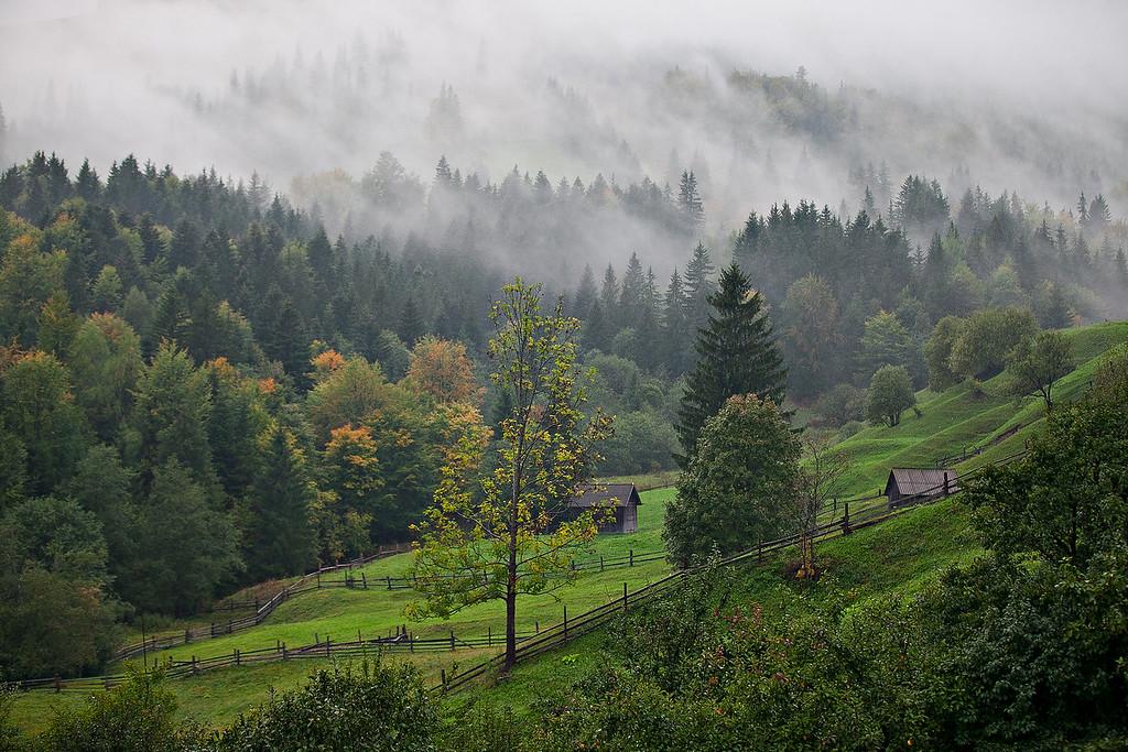 1Print-SC-In the Hills of the Karpaty, Where I Once Lived-Karen Pidskalny