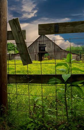 Peterson's Barn