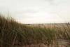 Alita Maini - Whispering summer storms on Lake Huron  - http://