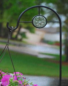 Plant Holder In The Rain