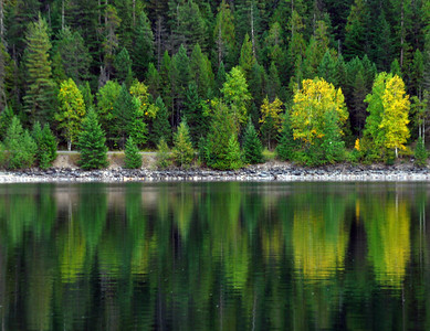 Reflections Of Early Fall