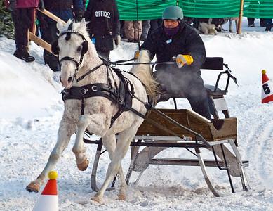 Horse & Sleigh Racing 1